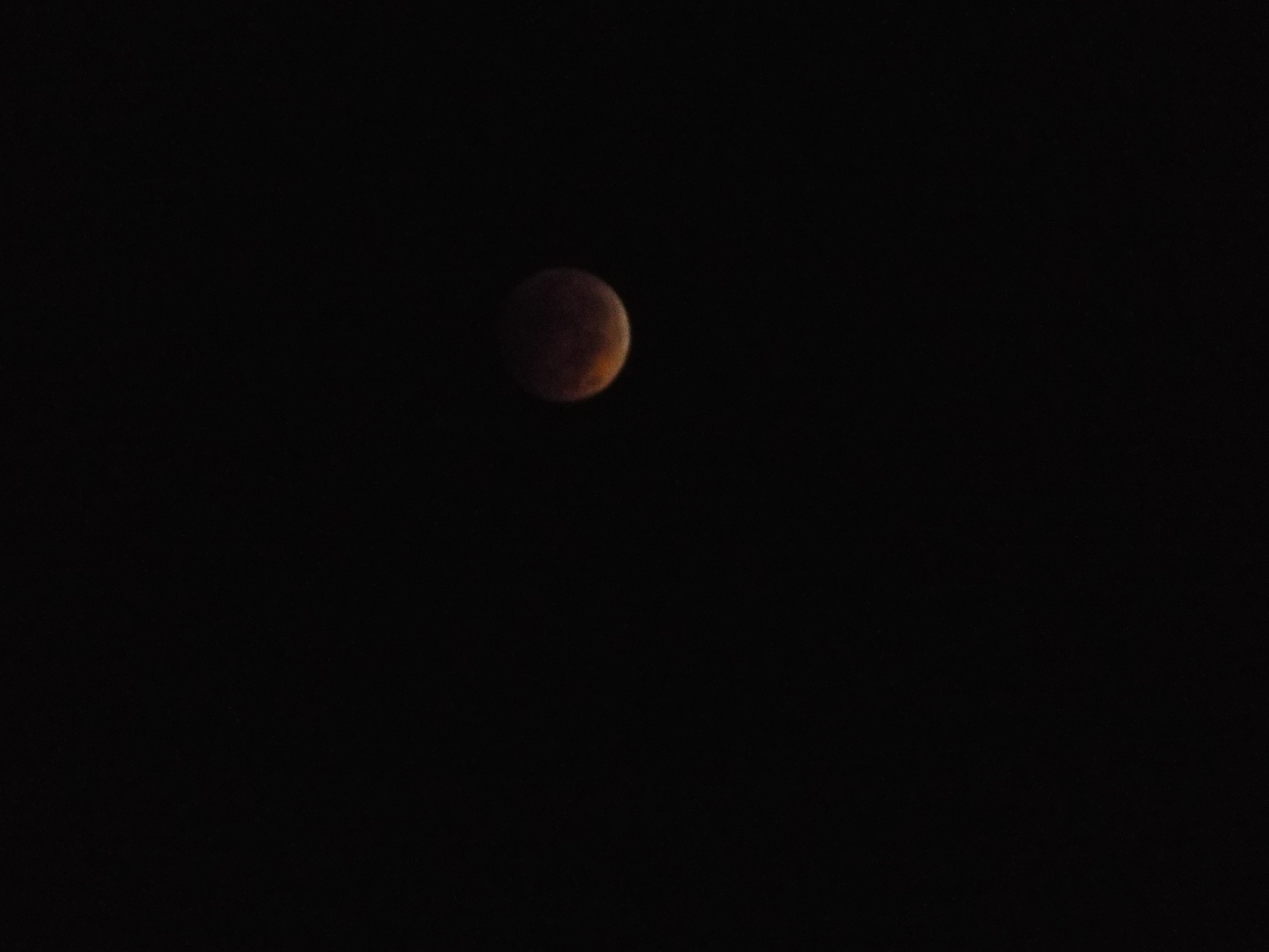 Lunar Eclipse 100814 002